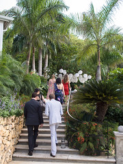 Ceremony Walk 2
