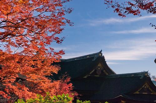 【写真】紅葉 : 北野天満宮