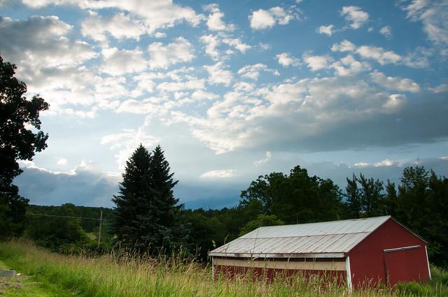 Farm Views - Watkins Glen