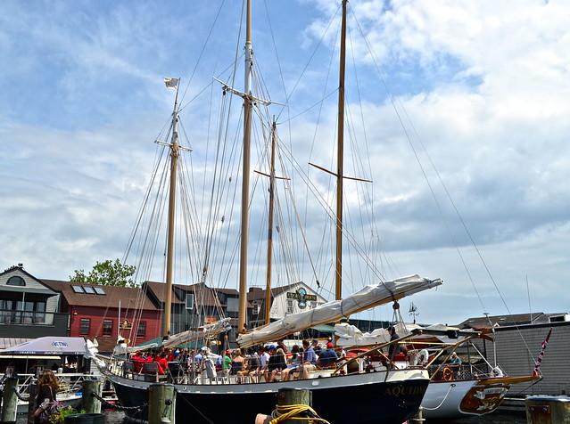 sailing newport rhode island