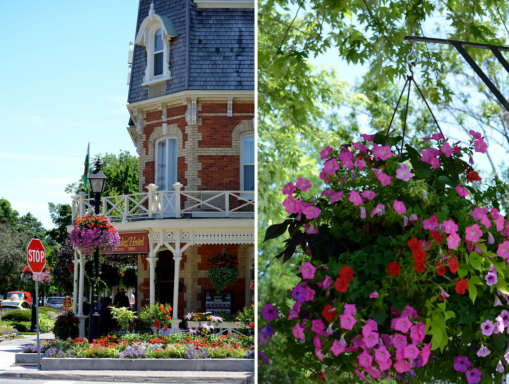 Niagara Flowers