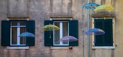 Floating umbrellas of Kotor