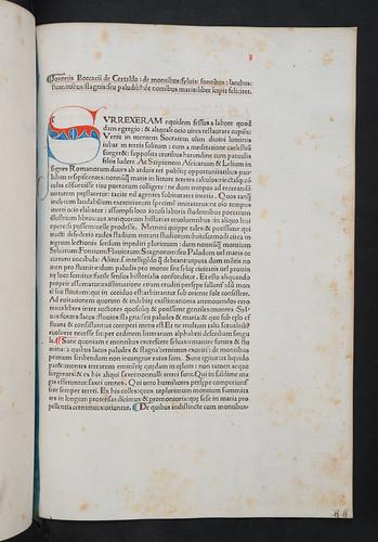 Penwork initial in Boccaccio, Giovanni: De montibus, silvis, fontibus