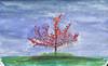 Tree on Cul-na-Shee beach by craiglea123