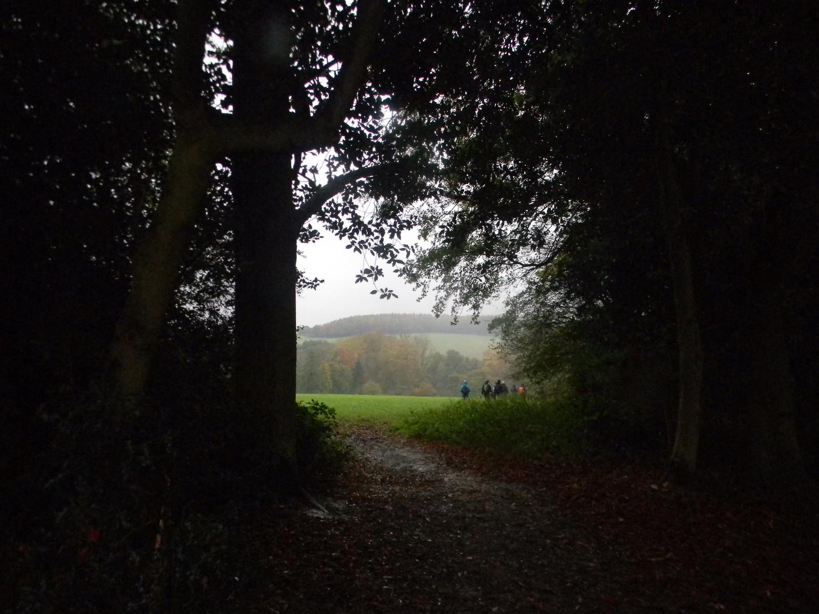 through a gap into a field Chorleywood to Chesham