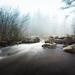 Fog by TimerTom