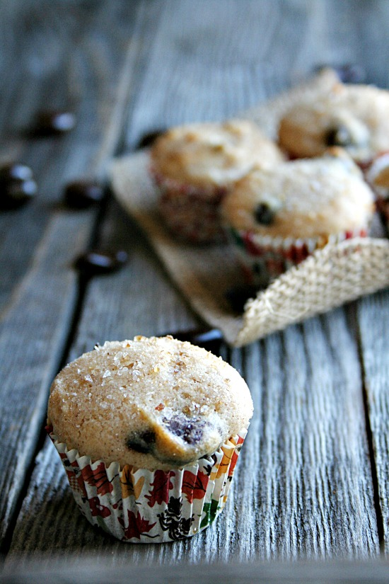Chocolate Cranberry mini Muffins