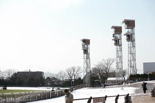 20140210 雪の東京競馬場 / Snowy Tokyo R.C.