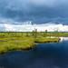 Estland - Soomaa Nationalpark