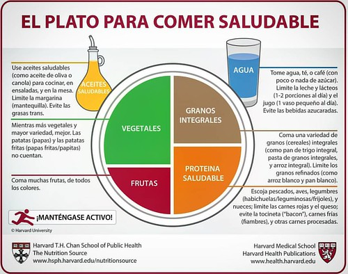 Gráfico de un plato saludable. #InstitutoTALADRIZ #auxiliardefarmacia #secretariadomedico www.InstitutoTALADRIZ.com.ar