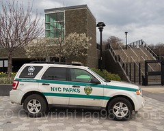 NYC Parks Enforcement Vehicle, Yankees Game at Yankee Stadium, The Bronx, New York City