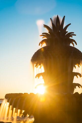 charleston chs southcarolina sc downtown waterfrontpark sunrise pineapplefountain