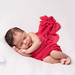 Little lady in red | Roslindale newborn photographer