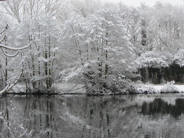 snow, Canon POWERSHOT SX230 HS