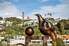 bronze Kereru sculpture with Durie Hill water tower in background, Whanganui