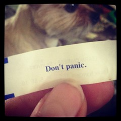 Sound advice #dontpanic