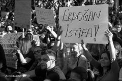 diren gezi parki...occupy istanbul...