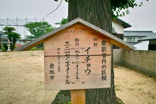 穴場神社 #8