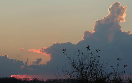 sunset atardecer campo sabina nube funes diegostiefel
