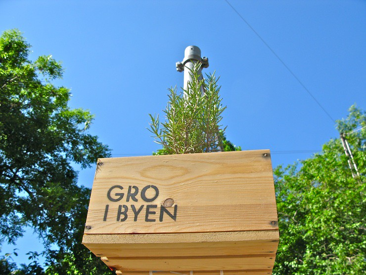 Gro i byen / Grow in the city