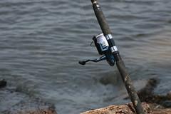 fish(0.0), vehicle(0.0), boating(0.0), fishing(1.0), sea(1.0), casting fishing(1.0), recreational fishing(1.0), jigging(1.0),