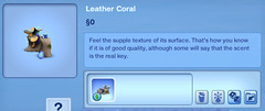 Leather Coral