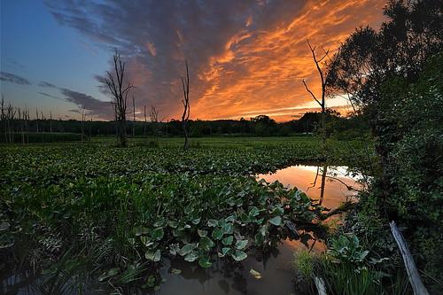 sunset circularpolarizer cuyahogavalleynationalpark cvnp nikond90 beavermarsh