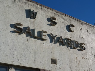 Warragul Shire Council Saleyards