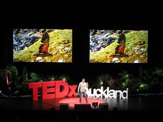 TEDx Auckland 2013 2013-08-03 051
