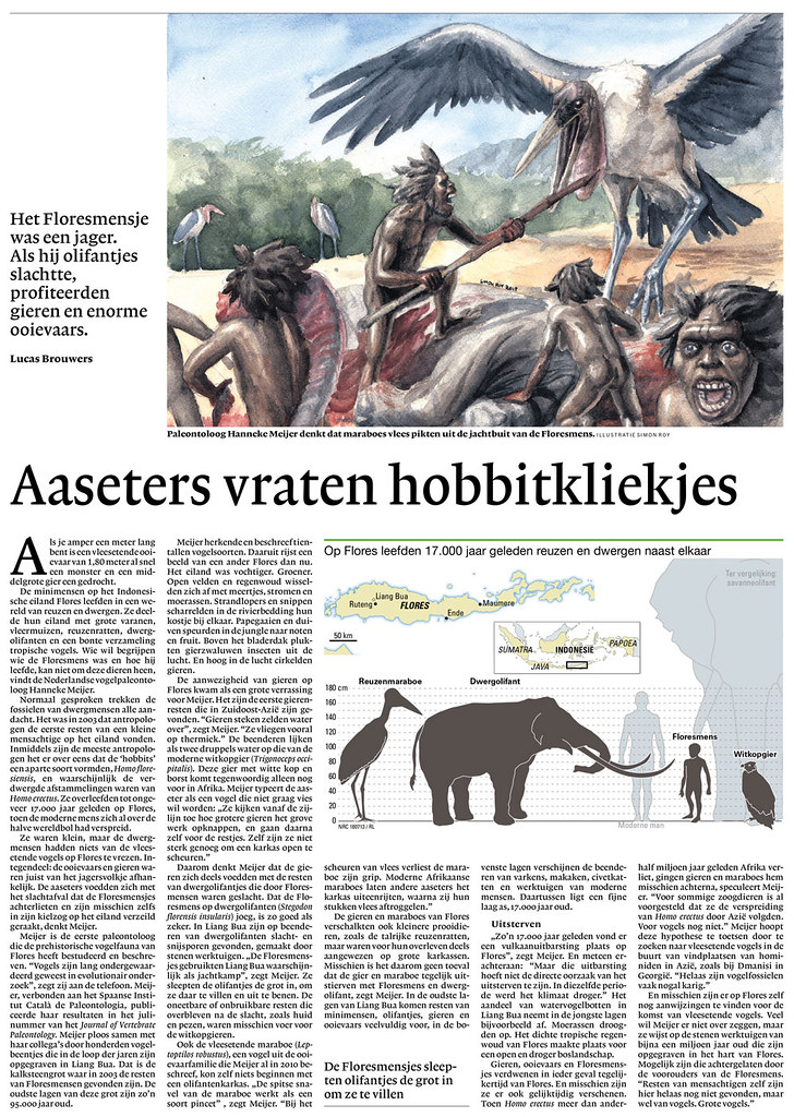 Illustration in Dutch Newspaper