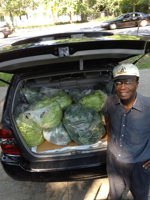 Jerome Phillip, a volunteer in the Herb Garden and member of St. Francis of Assisi Church in Crown Heights, delivered several car loads of fresh produce to his church's food pantry, where it was distributed to people in need. Photo by Caleb Leech.