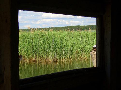 2. 圖片來源:http://www.flickr.com/photos/74452298@N00/2665752912,圖片作者:Beata。本圖符合CC授權使用。