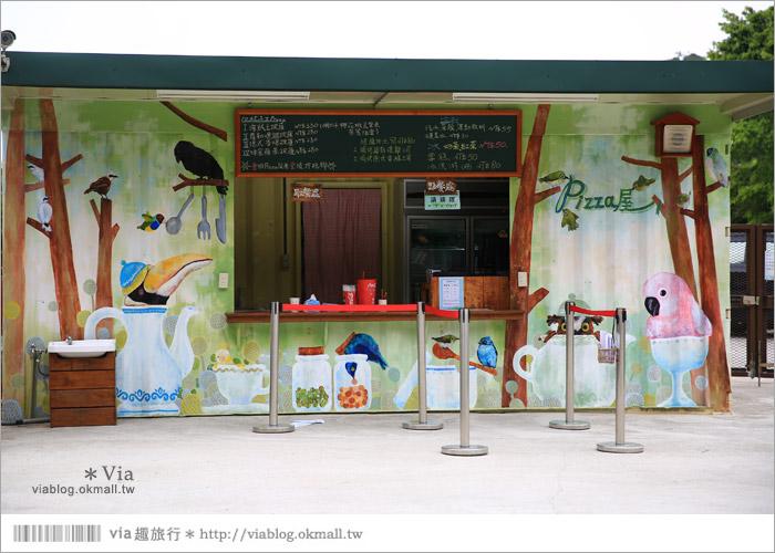 【新竹景點推薦】森林鳥花園~親子旅遊的好去處!在森林裡鳥兒與孩子們的樂園23