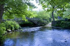 Bridge, Bingley