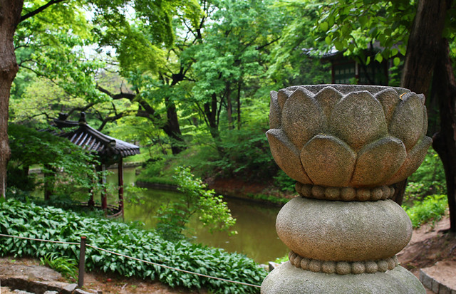 Secret Garden - Changdeokgung Palace - Seoul