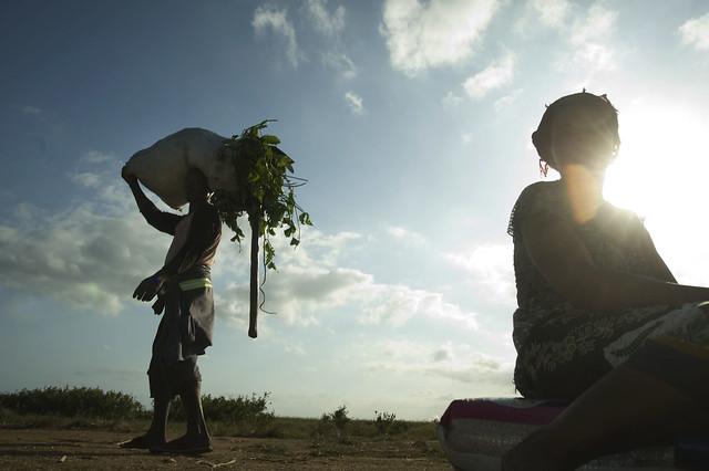 farming drought floods mozambique gaza adb globalwarming xaixai cif climateinvestmentfund baixolimpopoirrigationandclimateresilienceproject blicrp jeffreybarbee