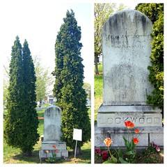 Belva Ann Lockwood's grave
