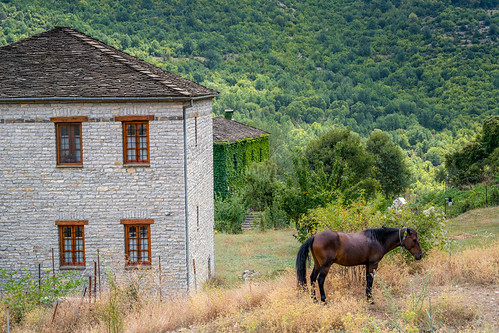 horse house mountains nature landscape events location greece vacations papingo epirus zagorochoria ipeiros ipirosditikimakedonia