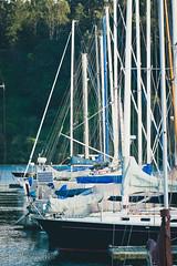 Sailboats on Treasure Island