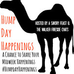Hump Day Button Image Two