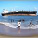 4196 - stranded ship  Pratibha Cauvery