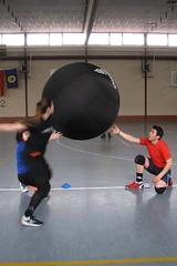 sport venue, sports, kin-ball, physical fitness, ball, athlete,