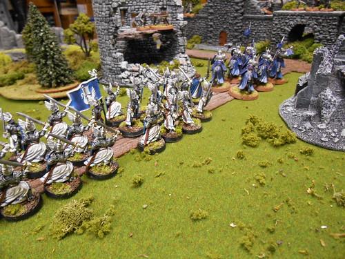 03 Swan Knights of Dol Amroth