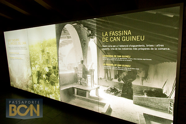 CIC Fassina, Sant Sadurní d'Anoia