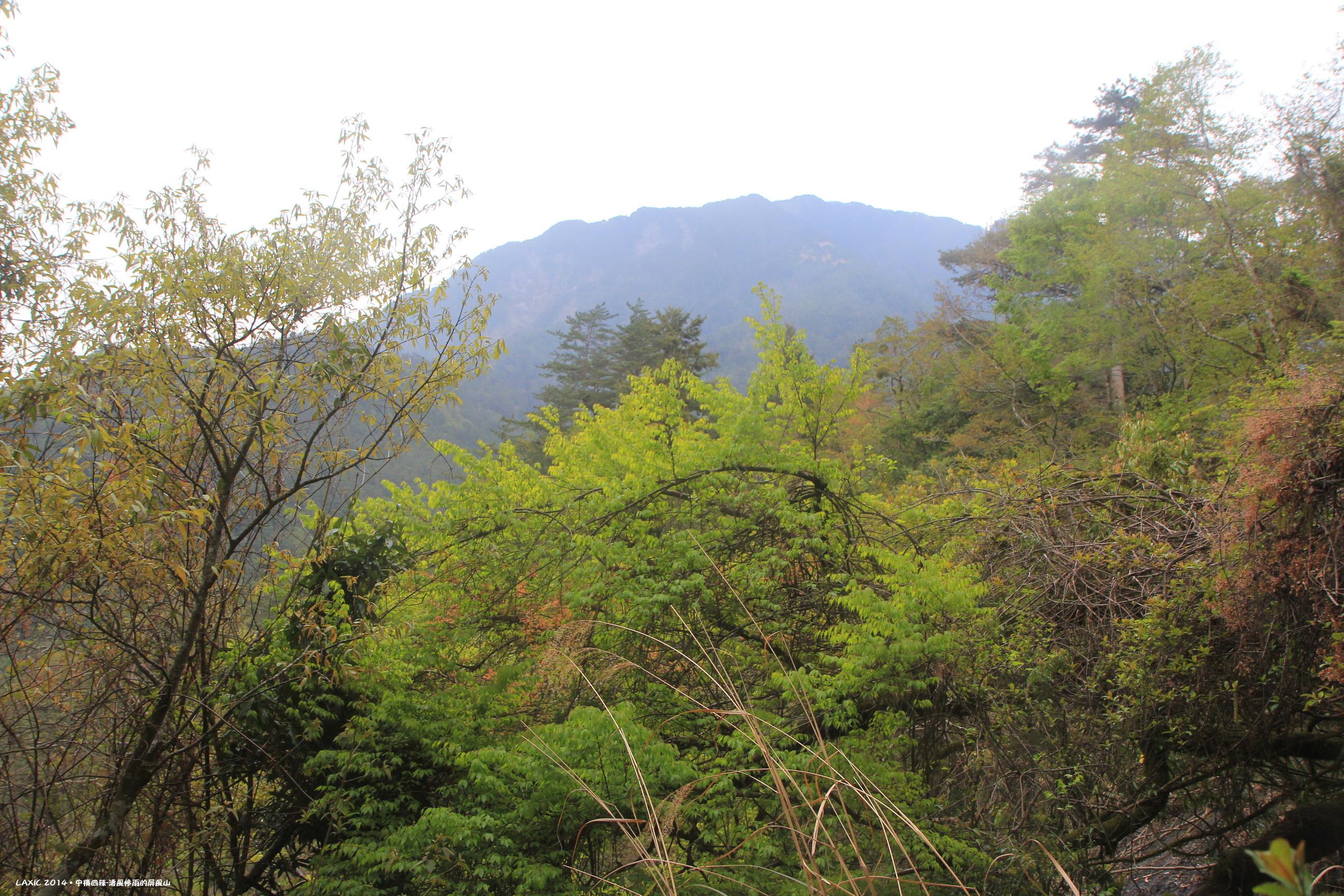 2014.04 中橫特辣屏風山