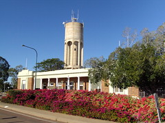 Longreach Council Chambers and the water tower. Trimmed bouganvillea in front.