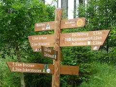 Noch 7,5 km zum Brocken-Gipfel