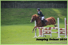 Jumping_Deinze_27-07-2014-201