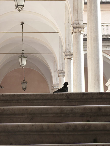 escalier Palazzo Bianco