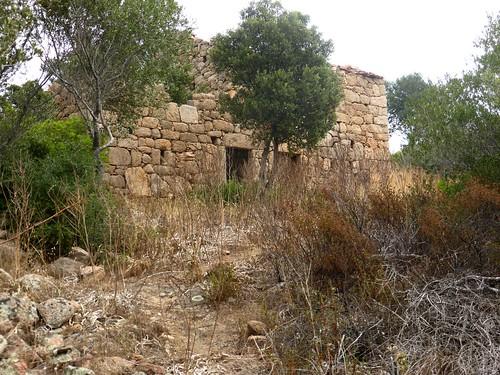 2ème maison de Ghjuncaghjola : arrivée par le sentier